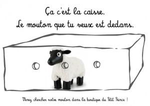 le-mouton-dans-la-caisse