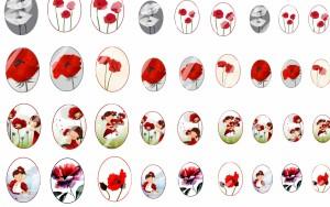 autres-pieces-pour-creations-36-images-digitales-pour-cabochons-2105930-coquelicot2-0de56_big